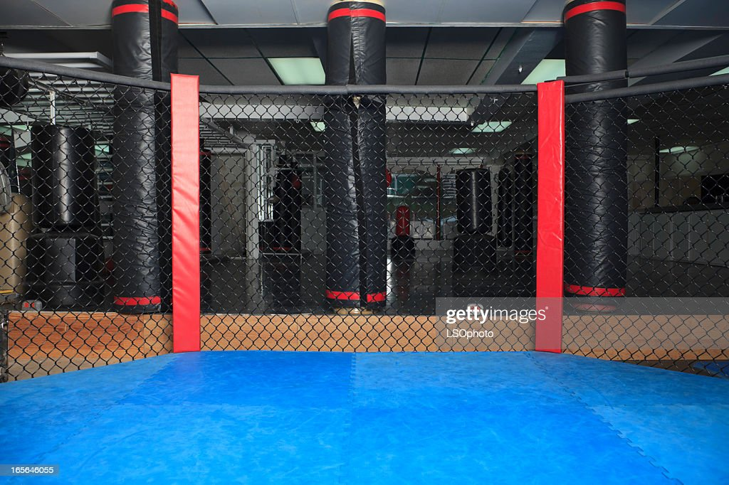 Octagon Ring Ultimate Fight
