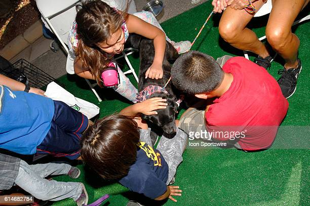 Kids pet a dog that is up for adoption from The Animal Foundation as part of the 350 Fest prior to the DC Solar 350 NASCAR Camping World Truck Series...