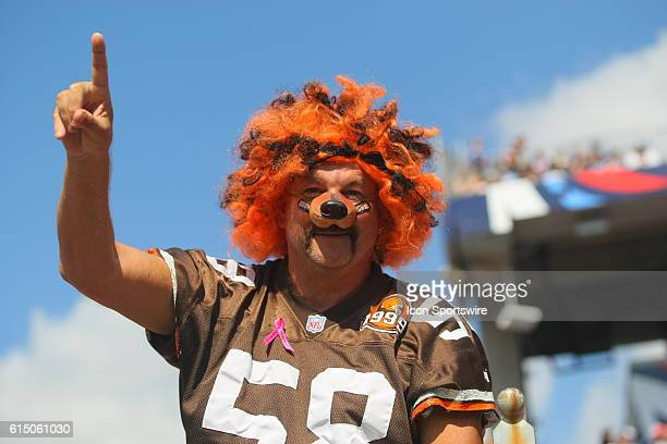 A Cleveland Browns Fan during game action The Tennessee Titans defeated the Cleveland Browns 2826 at LP Nissan Stadium in Nashville Tn