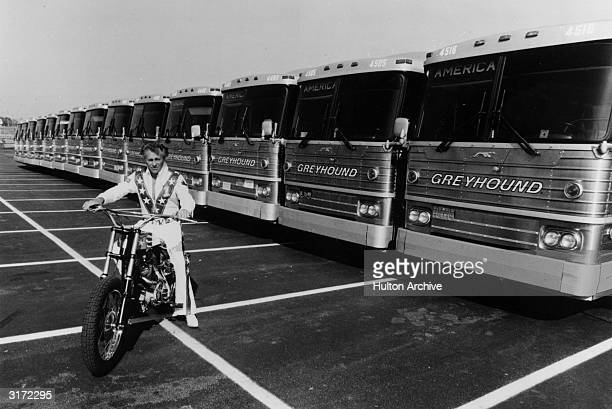 Fulllength portrait of American stunt artist Evel Knievel sitting on his motorcycle in front of a row of fourteen parked Greyhound buses which he...