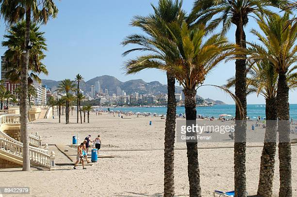 October 2007 Benidorm Alicante Valencian Comunity Spain Levante beach