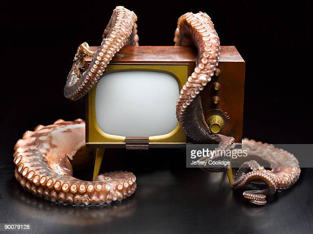 Octopus Attacking Television Set