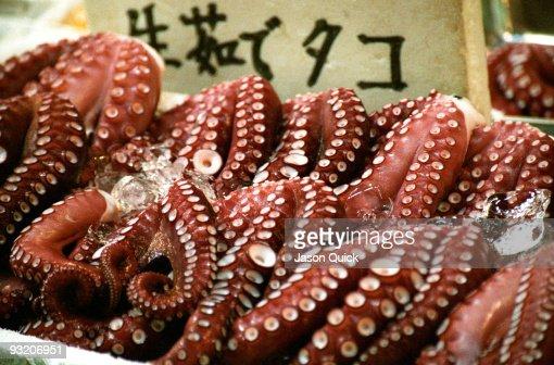 Octopus, Tsukiji Fish Market, Tokyo
