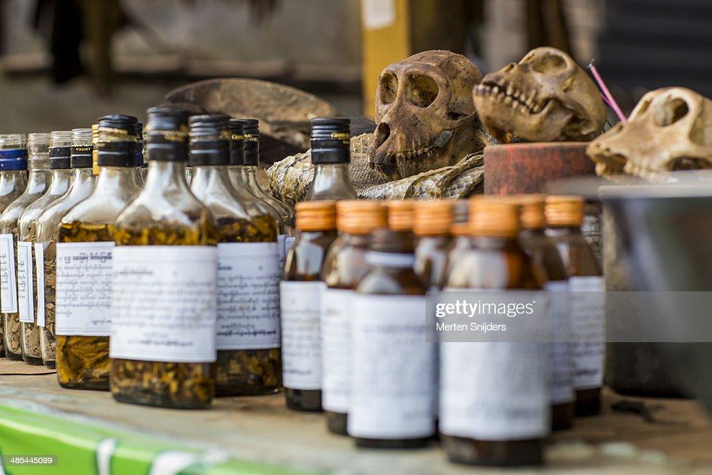 Odd herbalist medication in bottles