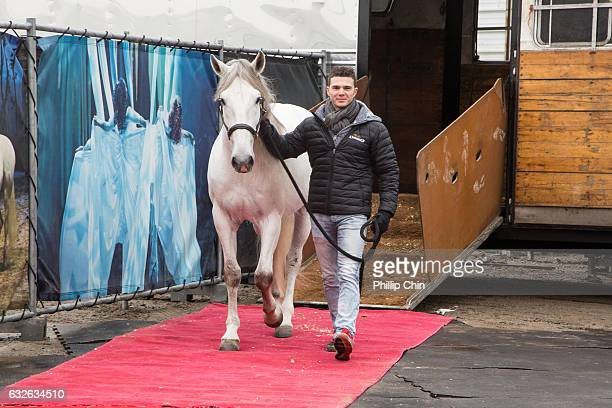 Odysseo equestrian director Mathieu Bianchi escorts Andaluz down the red carpet to her new Vancouver home at the Cavalia stables in Olympic Village...