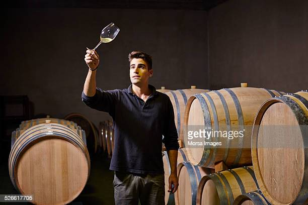Oenologist checking wine color