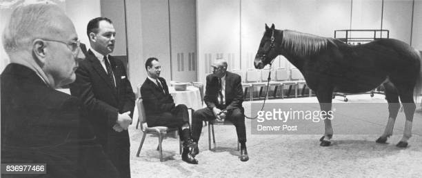 Of Course It's a Horse in a HotelHe's Guest of Honor This horse is an important part of the group attending the convention of the American...