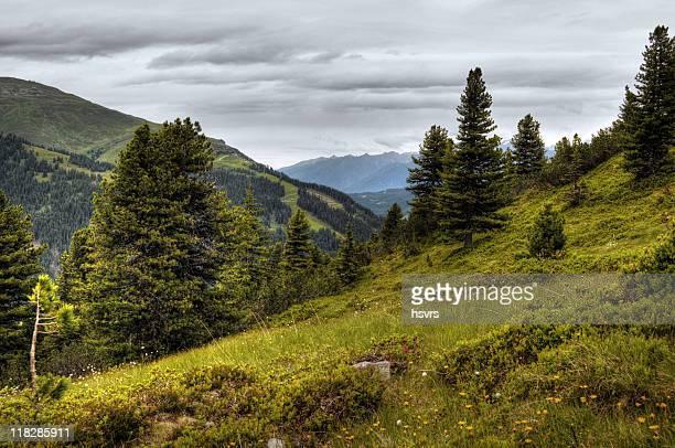 HDR von Zillertal Alpen Landschaft (Österreich)