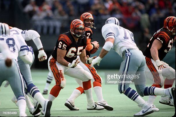 Offensive lineman Max Montoya of the Cincinnati Bengals blocks against the Dallas Cowboys as quarterback Boomer Esiason drops back to pass during a...