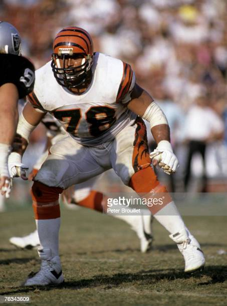 Offensive tackle Anthony Munoz of the Cincinnati Bengals during a 7 to 28 loss tor the Los Angeles Raiders on November 6 1989 at Los Angeles Memorial...