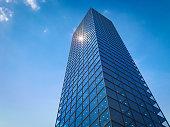 3d rendering office building in city