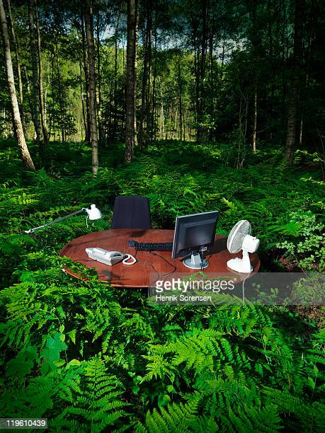 office desk in forest elevated view
