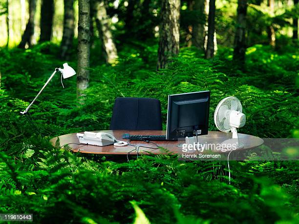 office desk in forest