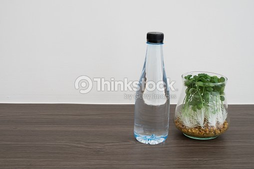 Office Desk With Bottle Of Water And Garden Plant On Glass Vase On