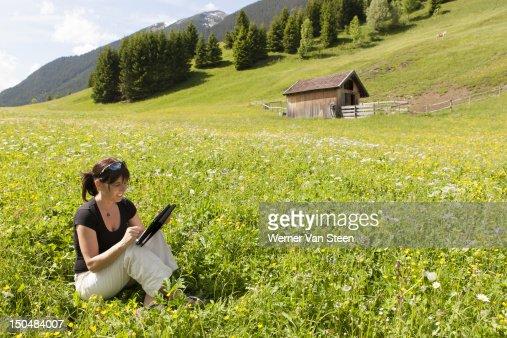 Office in spring flower field : Foto de stock