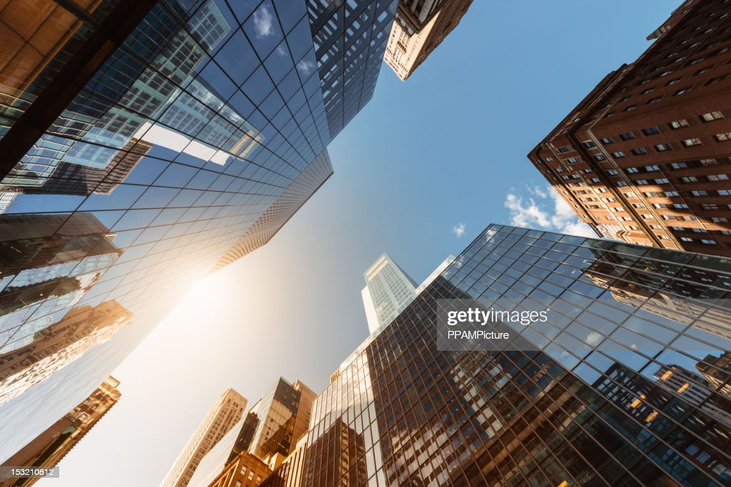 Office skysraper in the sun : Stock Photo