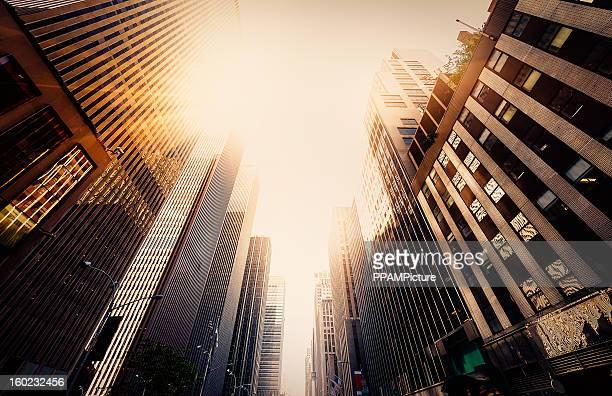太陽の下で事務所 skysraper