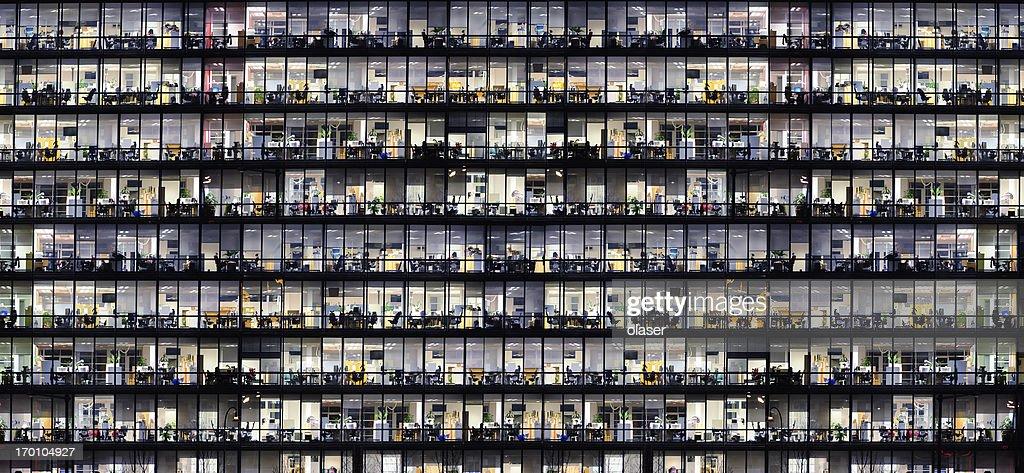 Office windows by night