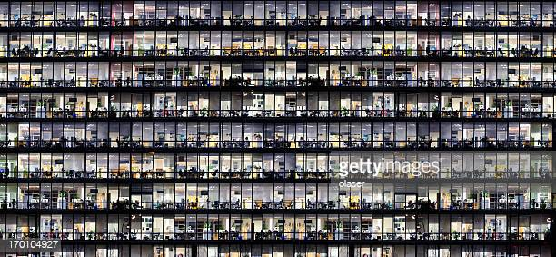 Office windows by night