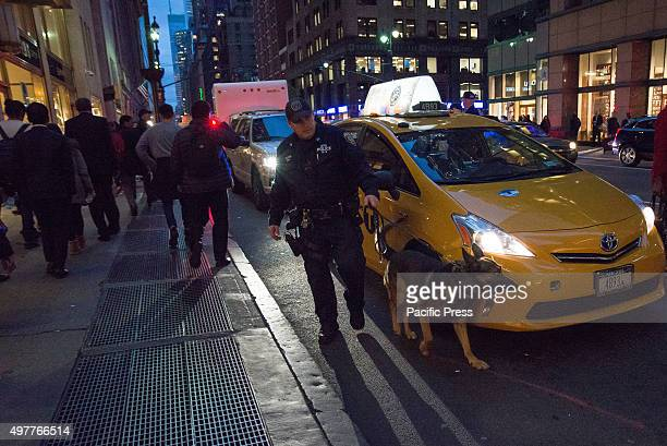 K9 officer and his dog inspect a tax cab randomly flagged for inspection on Lexington Avenue outside Grand Central Terminal Following the release of...