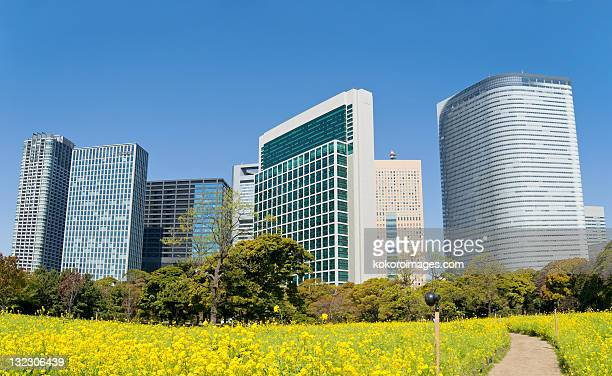 Offices of Shiodome