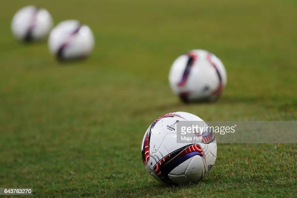 Official adidas balls are seen on the pitch prior to the UEFA Europa League Round of 32 second leg match between FC Schalke 04 and PAOK Saloniki at...