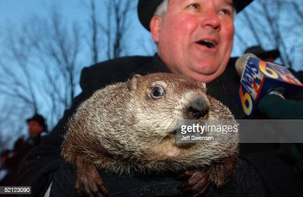 Official groundhog handler Bill Deeley holds Punxsutawney Phil as he talks to the local media February 2 2005 in Punxsutawney Pennsylvania Phil...
