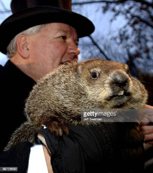Official groundhog handler Bill Deeley holds Punxsutawney Phil on February 2 2006 in Punxsutawney Pennsylvania Every February 2 people gather at...