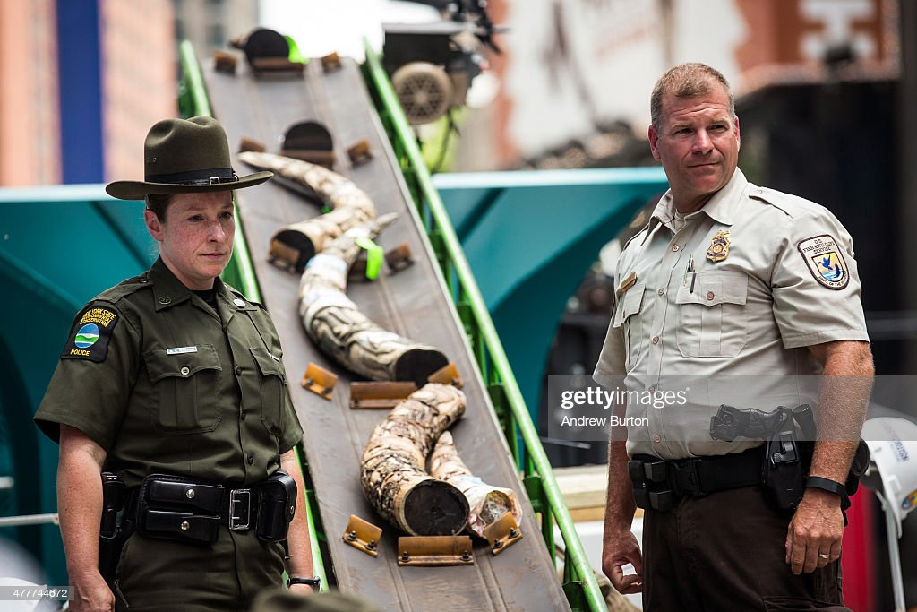 One ton of confiscated ivory destroyed in new york 39 s times for Us fish and wildlife