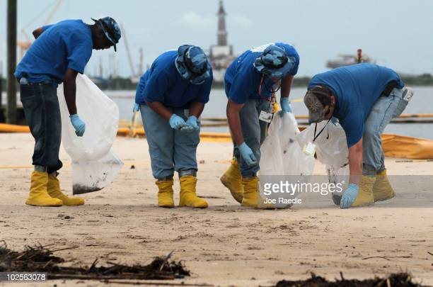 Oil cleanup workers pick up oily globs as they remove residue washing ashore from the Deepwater Horizon oil spill in the Gulf of Mexico on July 1...