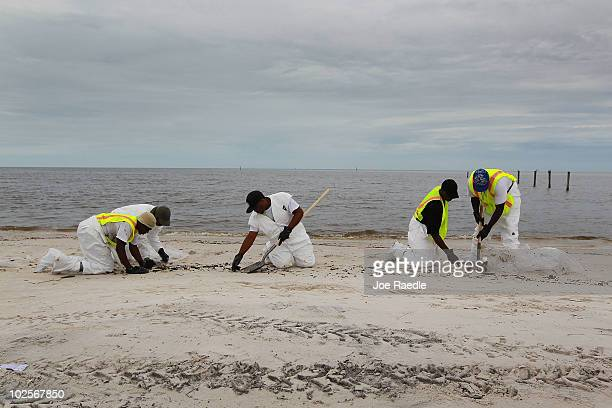 Oil cleanup workers pick up small oily globs as they remove residue washing ashore from the Deepwater Horizon oil spill in the Gulf of Mexico on July...