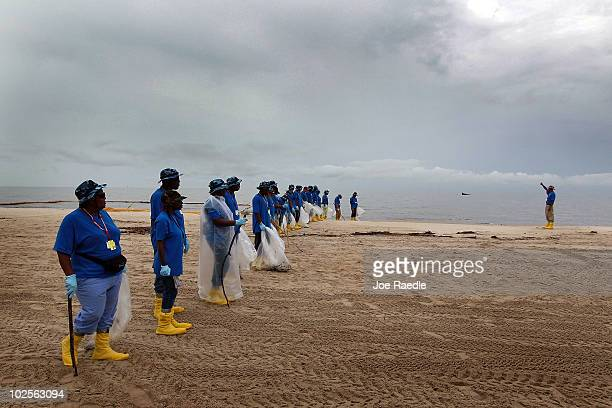 Oil cleanup workers wait for their leader to give a signal to start moving forward to pick up any oily globs as they remove residue washing ashore...