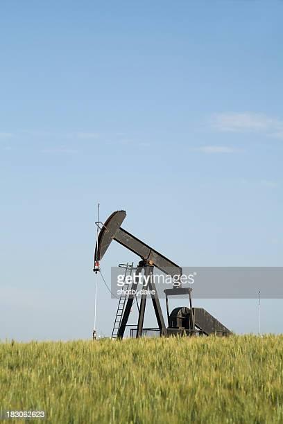 Oil Derrick in a Wheat Field