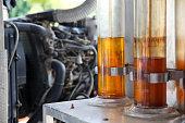 Oil palm biofuel biodiesel in tubes.