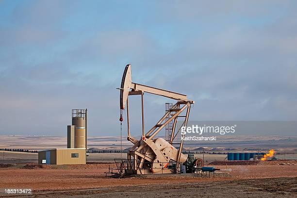 Oil Pumper
