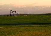 A pumpjack on the prairie