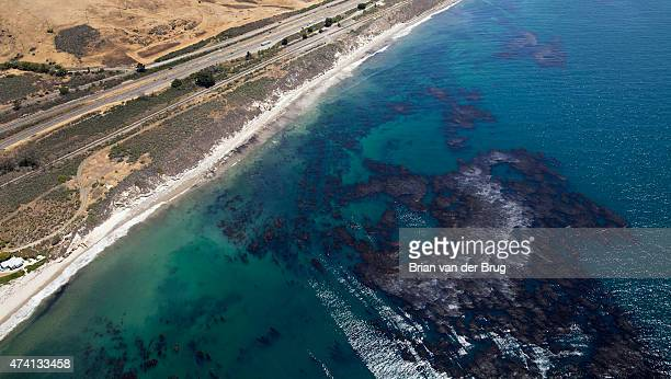 Oil soaked kelp and oil sheen as cleanup effort continues on the beach in Santa Barbara Calif on May 20 2015