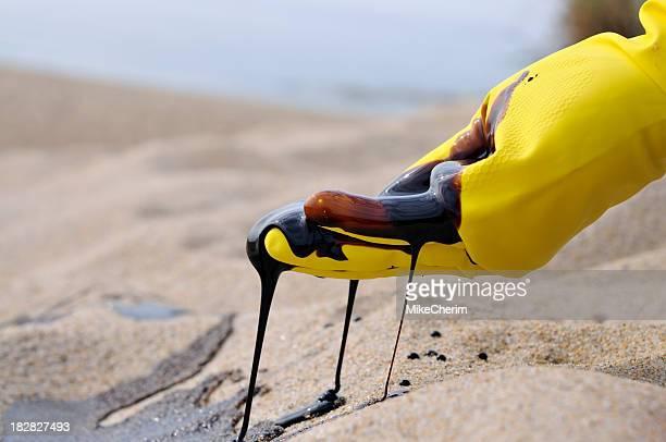 Oil Spill: Environmental Disaster