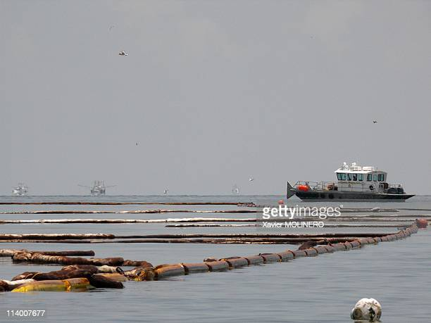Oil Spill Gulf of Mexico in Grand Isle United States In June 2010Booms filled with oil off the coast of Grand Isle try to keep the oil spill off the...