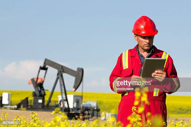 Oil Worker and Canola Field