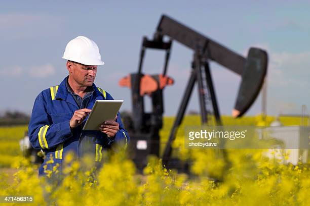 Oil Worker in Canola