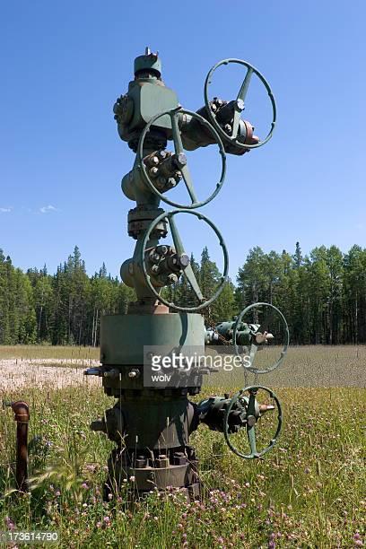 Oilfield # 13