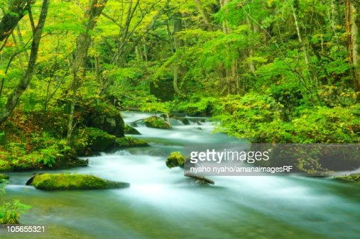 Oirase Stream Flowing Through Towada Hachimantai National Park. Towada, Aomori Prefecture, Japan : Stock Photo