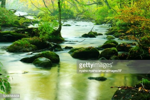 Oirase Stream Flowing Through Towada Hachimantai National Park. Towada, Aomori Prefecture, Japan : 스톡 사진