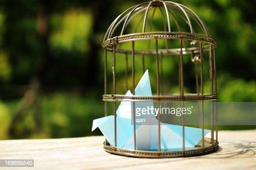 gabbia per gli uccelli foto e immagini stock getty images. Black Bedroom Furniture Sets. Home Design Ideas