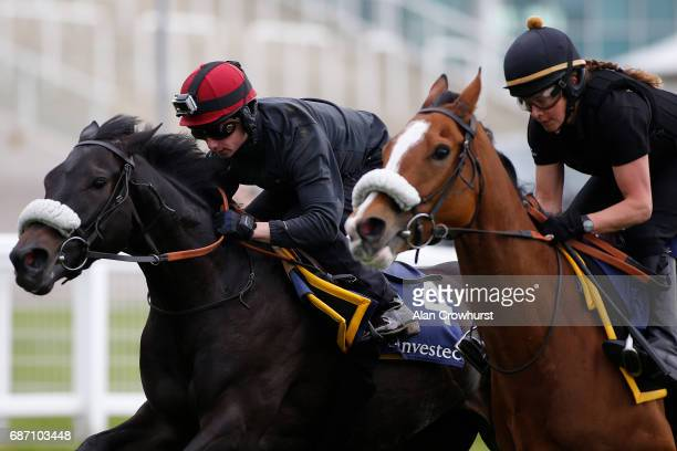 Oisin Murphy riding Horseplay gallop at Epsom Racecourse on May 23 2017 in Epsom England