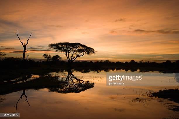 Okavango al crepuscolo