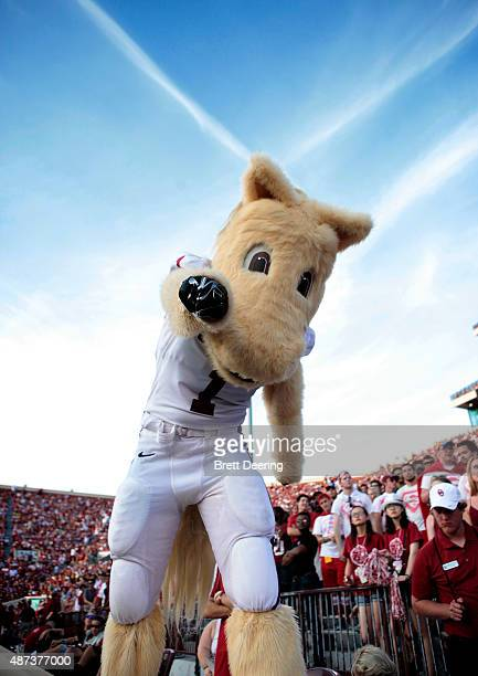 Oklahoma mascot Sooner performs during the game against the Akron Zips September 5 2015 at Gaylord FamilyOklahoma Memorial Stadium in Norman Oklahoma...
