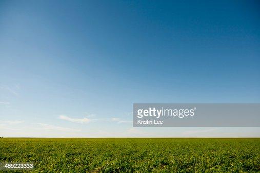 USA, Oklahoma, Rural landscape