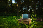 Old analog TV in forest